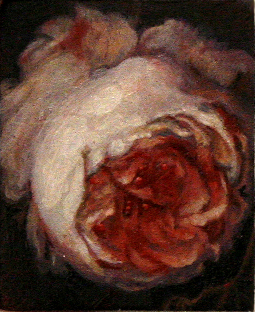 Daniel Bilodeau artist Blowsy Peony Oil on Wood